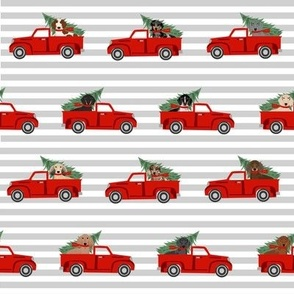 christmas dachshund red truck fabric - cute doxie fabric, cute dachshund fabric, dog fabric, dog design,  - grey stripe