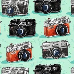 Vintage Cameras Small