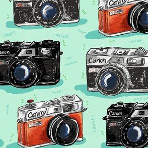 Vintage Cameras LARGE size
