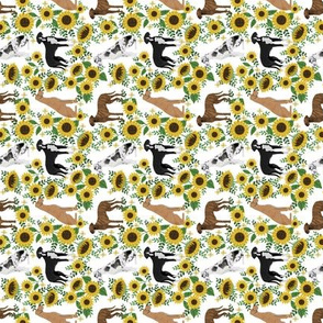 SMALL - great dane sunflowers fabric - dog fabric, sunflowers fabric, yellow fabric - white