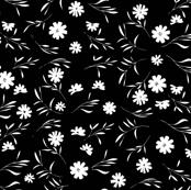 Wild flowers (bw)