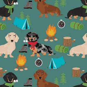 doxie camping fabric - dog fabric, dachshund fabric, campfire fabric, outdoors adventurer fabric -green
