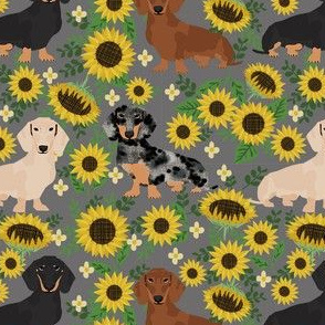 doxie sunflower fabric - dog sunflower fabric, sunflowers fabric, dog design - grey