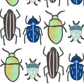 Bug Catching Specimen