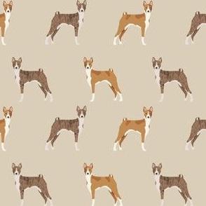 basenji standing pure breed dog fabric tan