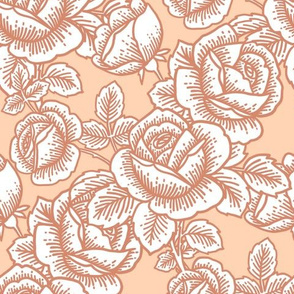 Vintage roses in peach