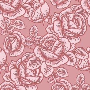 Vintage roses in pink
