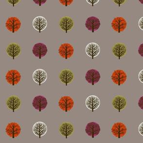 modern seasons