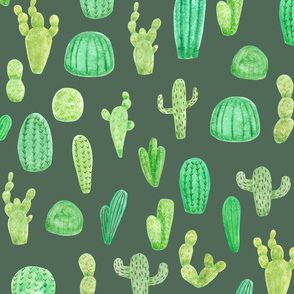 Cactus on Green