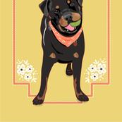DOG P0RTRAIT work6_19-01