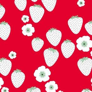 Summer strawberry garden hot red mint