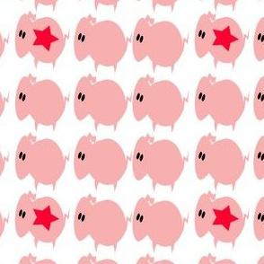 piglets galore