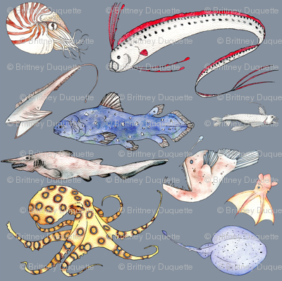 Fish_curtains3_preview