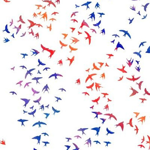 Swallows - blue and red