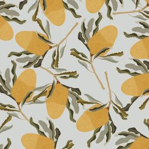 Banksia Liana Grey_Iveta Abolina