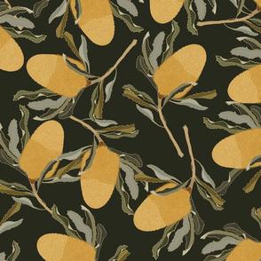 Banksia Liana Green_Iveta Abolina