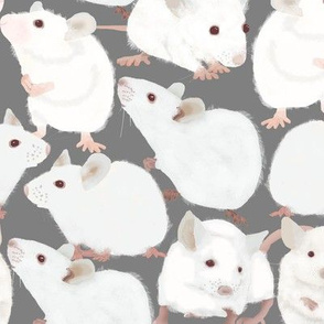 White Mice on Gray Background