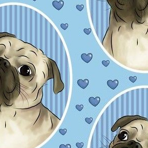 Love for pugs -blue big