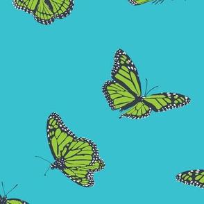 Aqua Monarch Butterfly