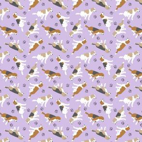 Tiny Beagles - purple