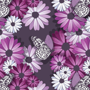 African Daisy Spring Floral // normal scale // violet