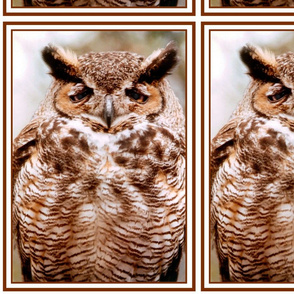Owl with an Attitude 2 upright w/border