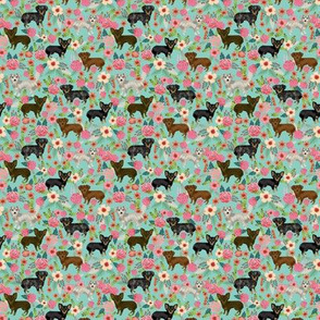 TINY - chiweenie  floral dog fabric cute dogs fabric dog design