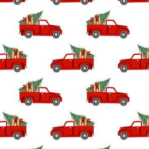 afghan hound christmas truck holiday fabric - dog christmas fabric, christmas dog, cute dog, afghan hound fabric - white