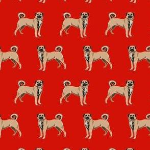 anatolian shepherd dog - anatolian dog, dog breed, dog breeds, dog fabric - red