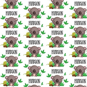 Hudson Koala