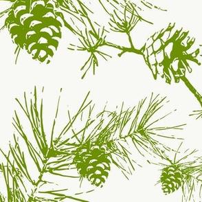 pinecones and needles