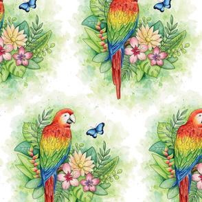Scarlet Macaw - jumbo scale