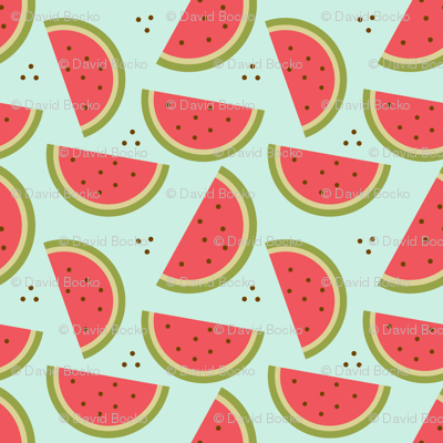 Rwatermelon-pattern-converted_preview