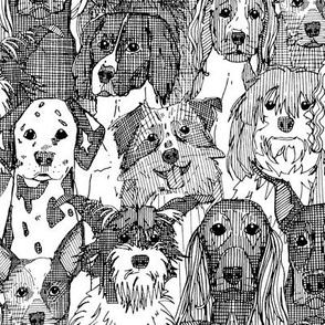 dogs aplenty black white small