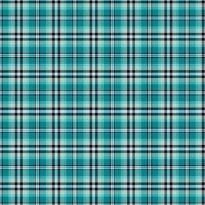 Custom Turquoise Black and White Plaid