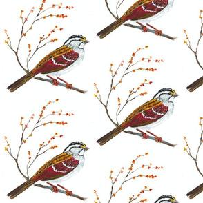 Sweet Sparrow Farm 2-ed