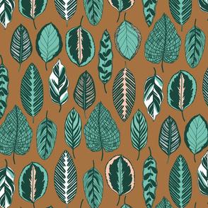 calathea leaves - brown