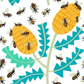 Banksias and Bees
