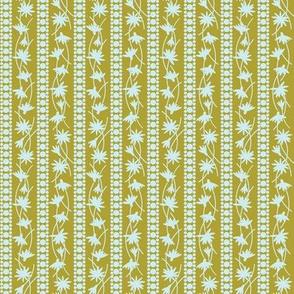 Rudbeckia Gold Sky Stripe 2-01
