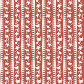 Rudbeckia Red White Stripe 2-01