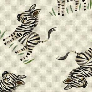 zebra minta white