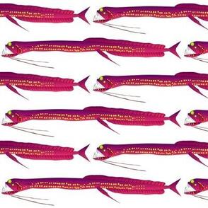 Deep Sea Dragonfish