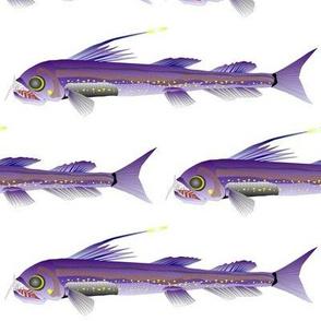 Deep Sea Viperfish