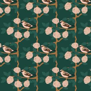Viburnum and Sparrow