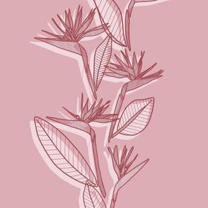 Misaligned Vertical Bird Of Paradise Rose Tones