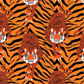 Here kitty kitty! Orange version