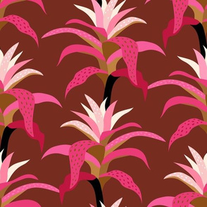 Bromeliad - Pink and Ginger