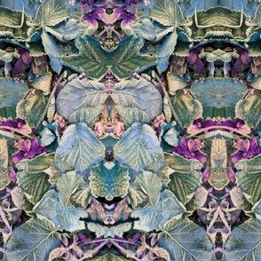 feuilles 1.2