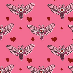 love moth