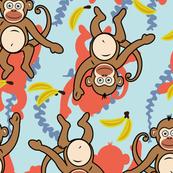 Wonder monkey